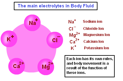 main-electrolytes-in-body-fluid.png